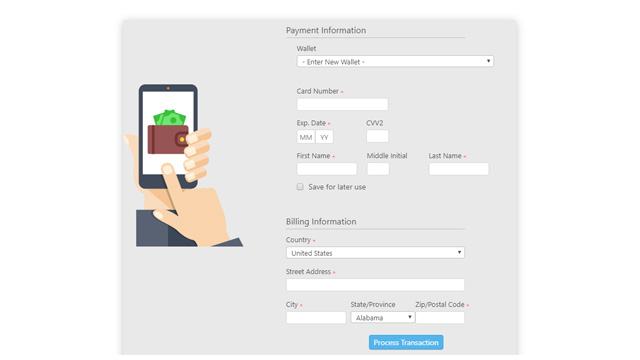 Preview of Goship Payment Form