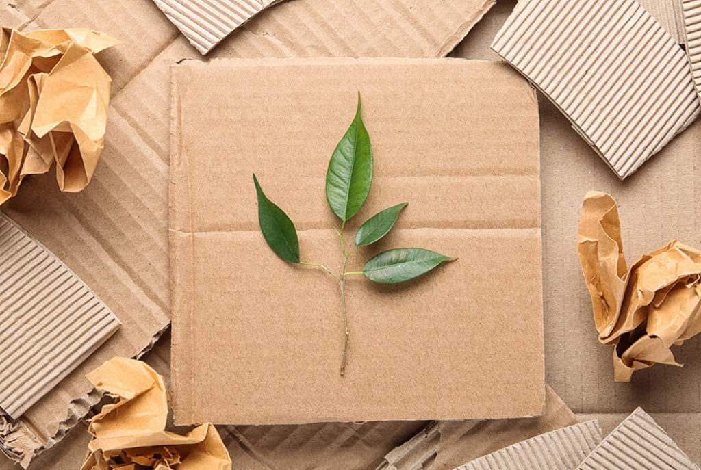 Sustainable Strategy: Eco Friendly Packaging